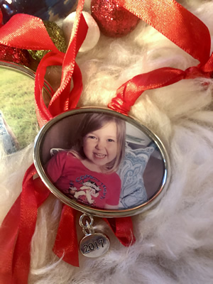 Enchanted Valley Acres - Fun Photo Ornament